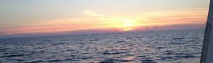 MAC Sunset